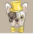 Hipster dog french bulldog breed vector