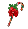 Christmas cane with red berries isolated on white vector