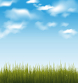 Spring background with green grass and sky vector