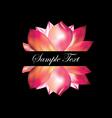 Pink lotus on black background vector