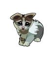 Cartoon kitten unhappy vector