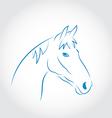 Hand drawn head horse vector