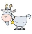 Gray goat vector
