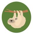 Cute white sloth family vector
