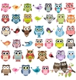 Set of color cartoon owls vector