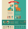 Cat and dog infographics with icons set vector