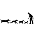 Dog domestication vector