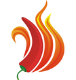 Pepper flame vector