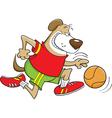 Basketball dog vector