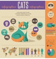 Cat infographics with icons set vector
