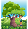 A boy standing on a root of a tree vector
