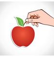 Apple in hand vector