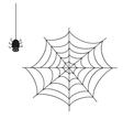 Spider on white background vector