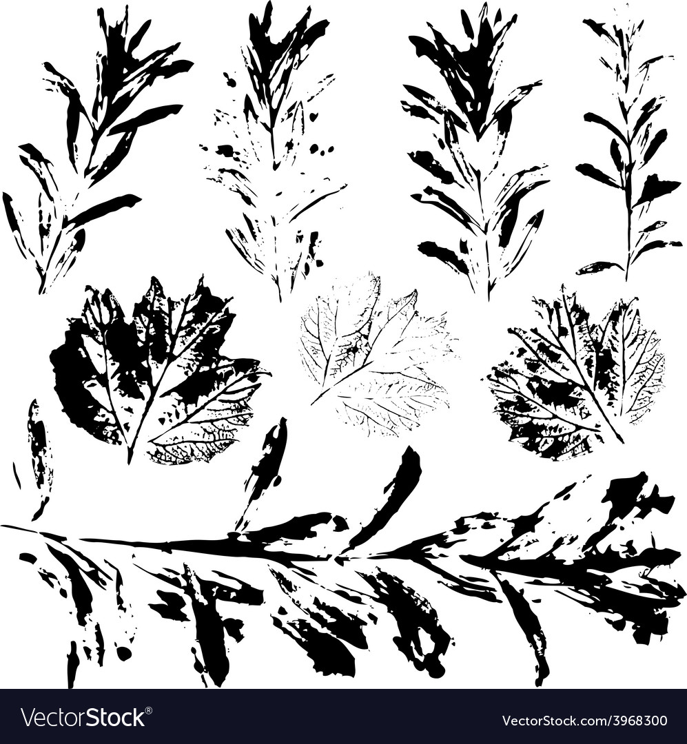 Set of prints black leaves on a white background vector | Price: 1 Credit (USD $1)