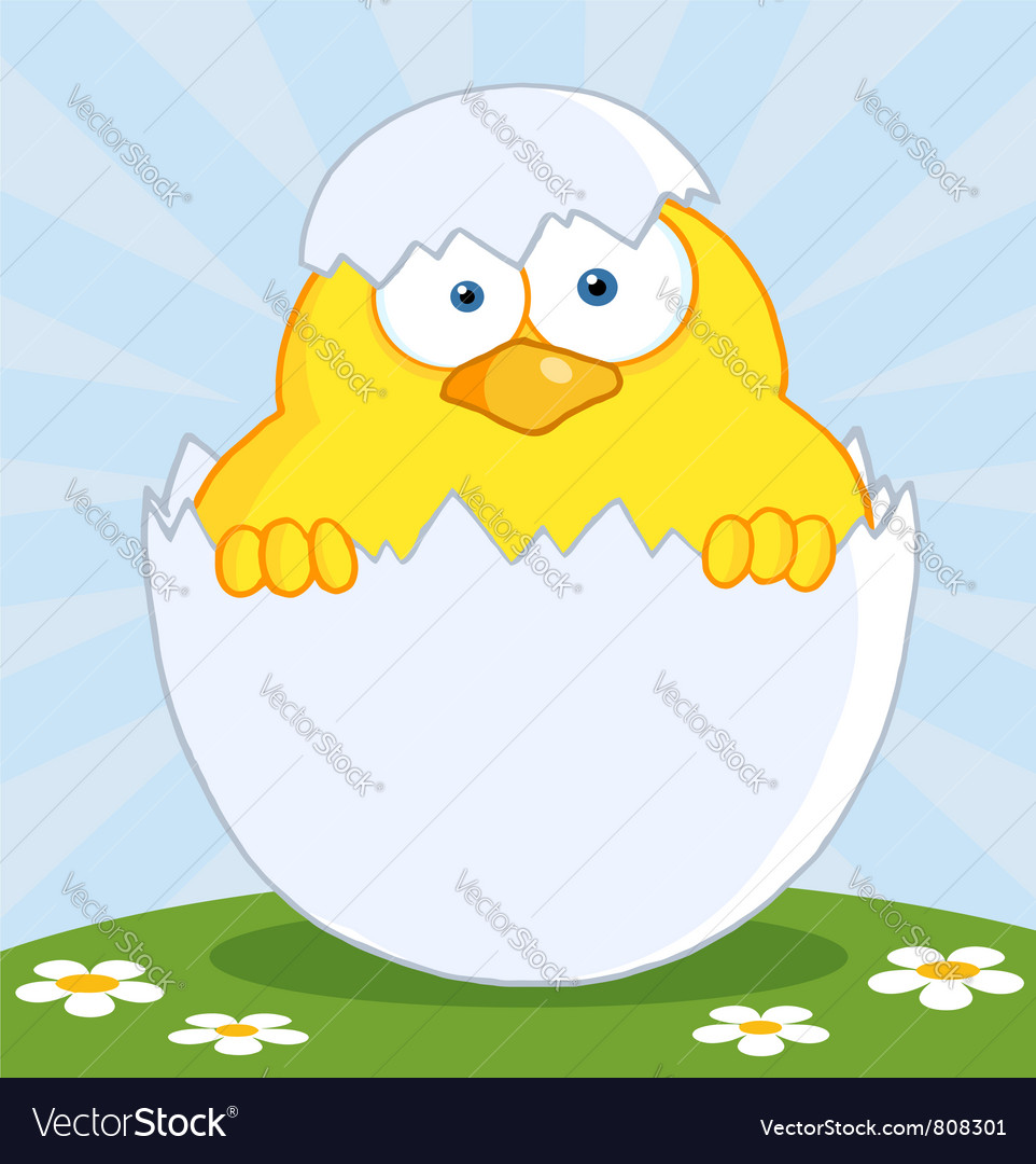 Yellow easter chick in a shell on a hill vector | Price: 1 Credit (USD $1)