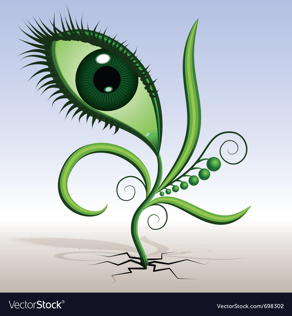 Plant-eye vector | Price: 1 Credit (USD $1)
