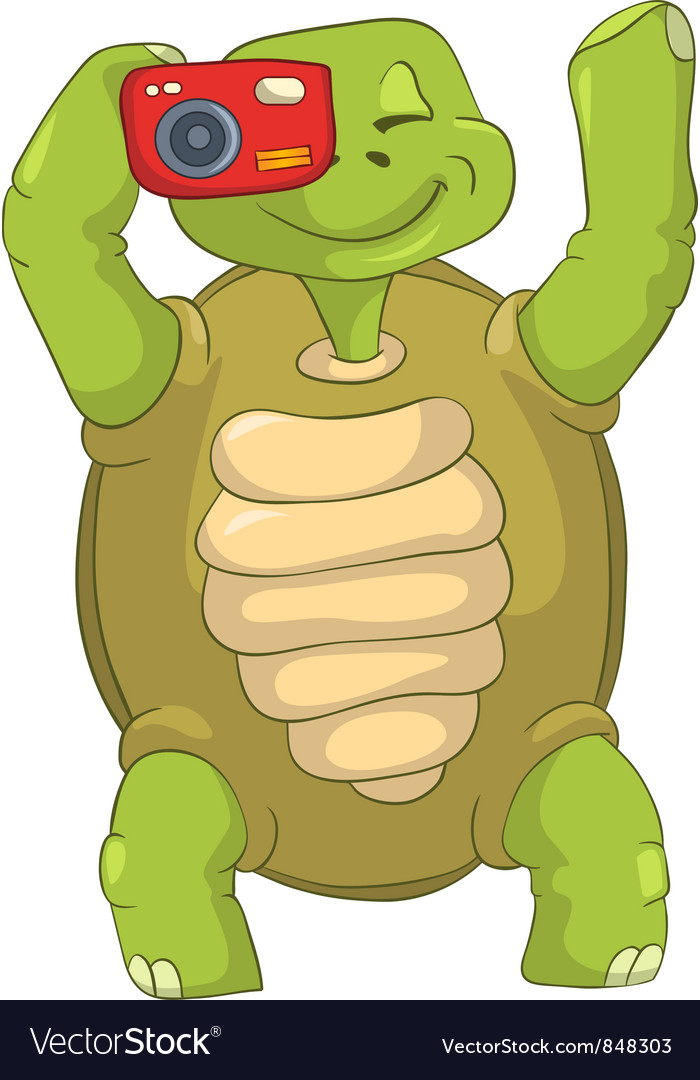 Funny turtle tourist - photographer vector | Price: 3 Credit (USD $3)