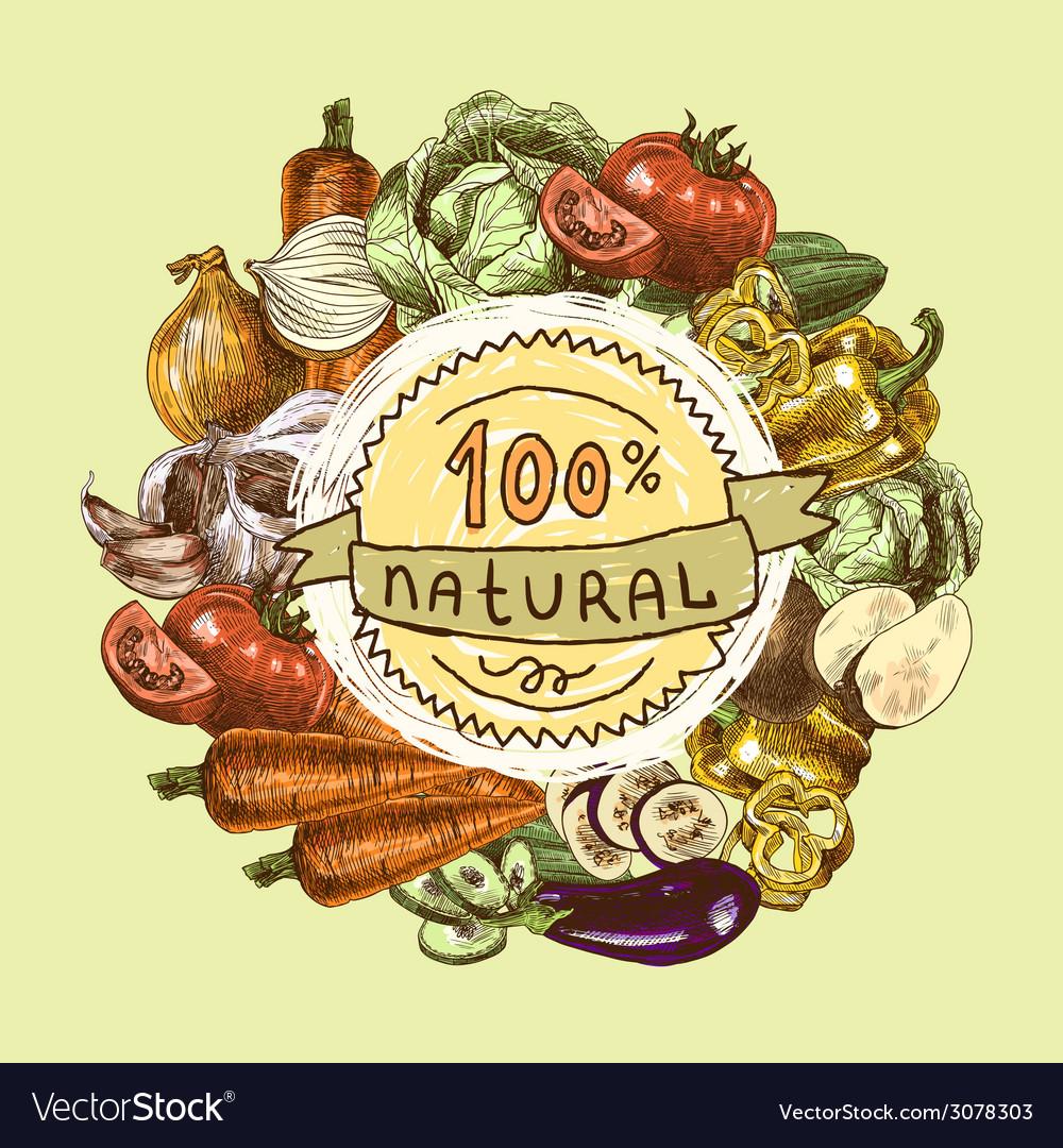 Vegetables sketch background vector | Price: 1 Credit (USD $1)