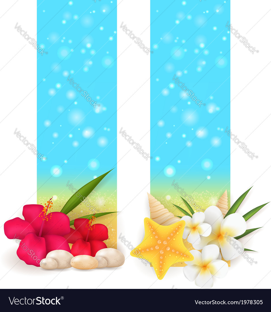 Summer vertical banners vector | Price: 1 Credit (USD $1)