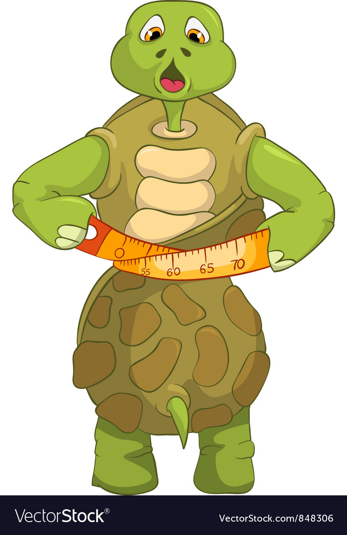 Funny turtle diet vector | Price: 3 Credit (USD $3)