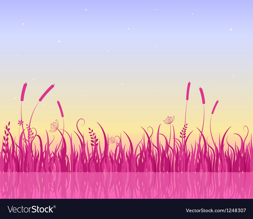 Misty morning on lake with pink grass silhouette vector | Price: 1 Credit (USD $1)