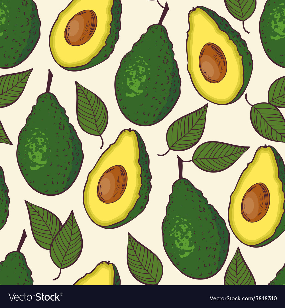 Avocado seamless pattern vector | Price: 1 Credit (USD $1)