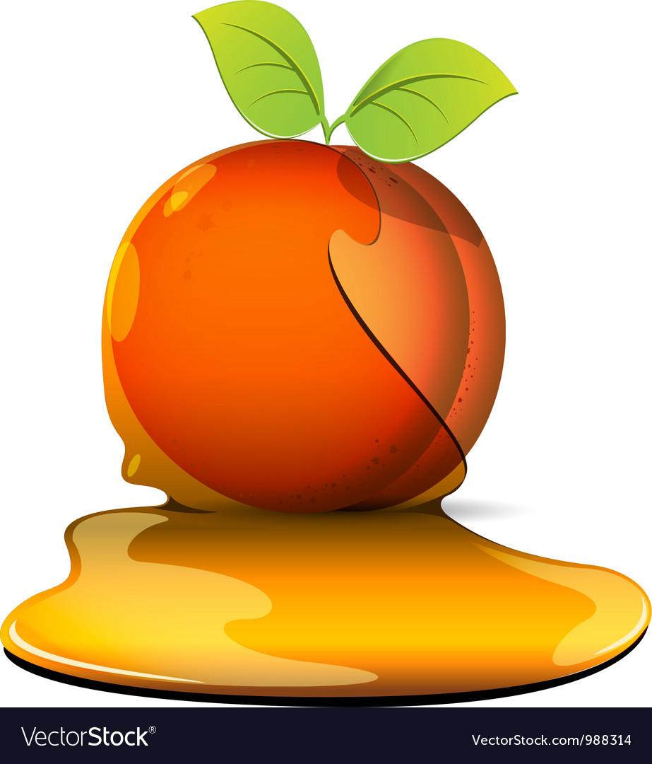 Peaches in caramel vector   Price: 3 Credit (USD $3)