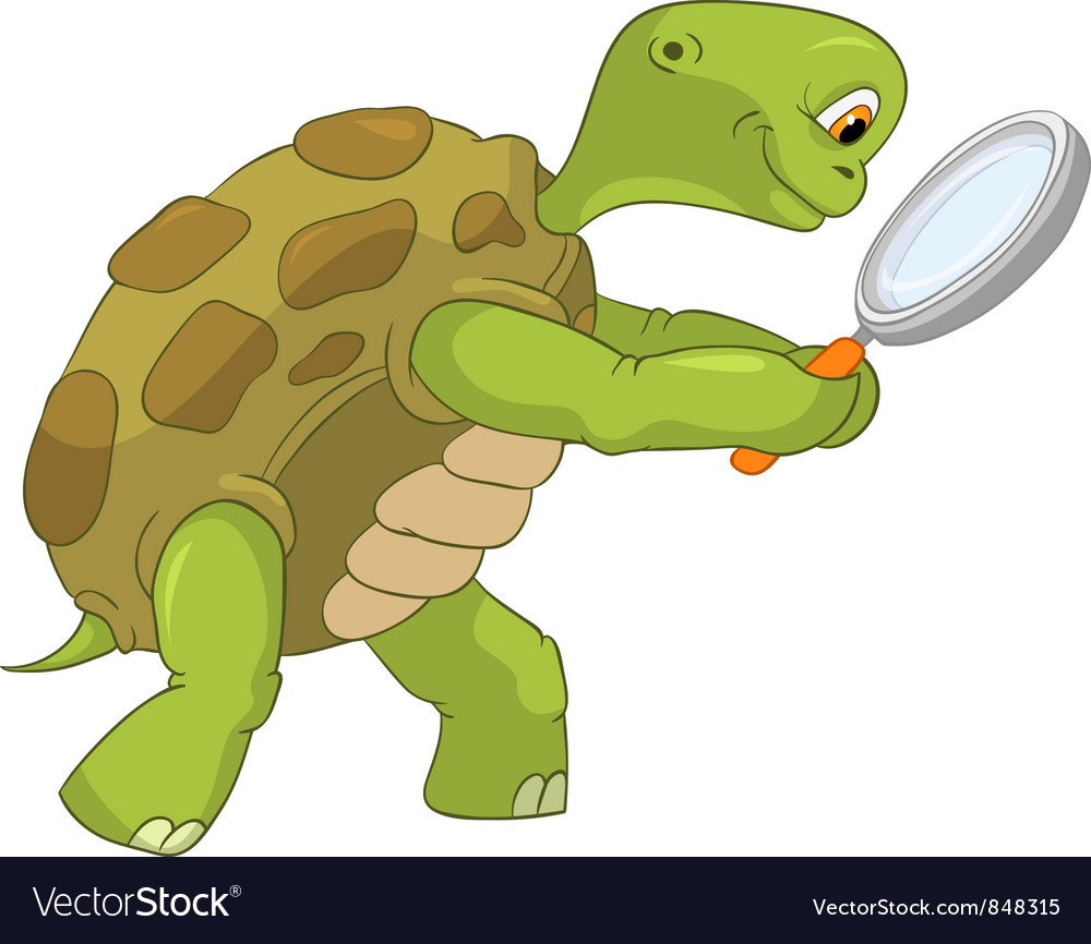 Funny turtle finding vector | Price: 3 Credit (USD $3)