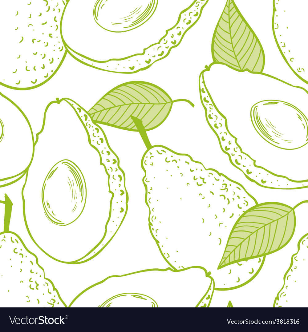 Outline seamless pattern with avocado vector | Price: 1 Credit (USD $1)