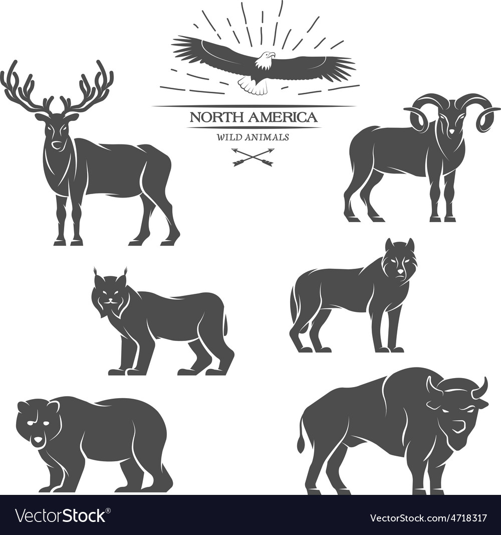 Large animals in north america vector | Price: 1 Credit (USD $1)