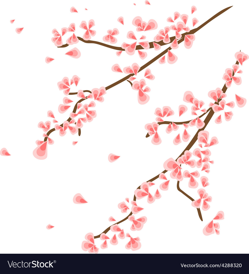 Branch with sakura flowers vector | Price: 1 Credit (USD $1)