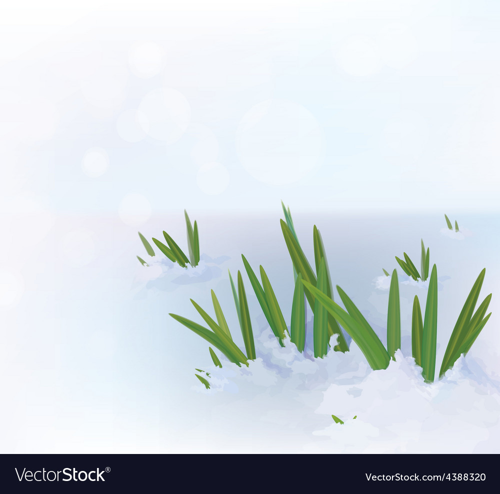 Grass snow vector | Price: 1 Credit (USD $1)