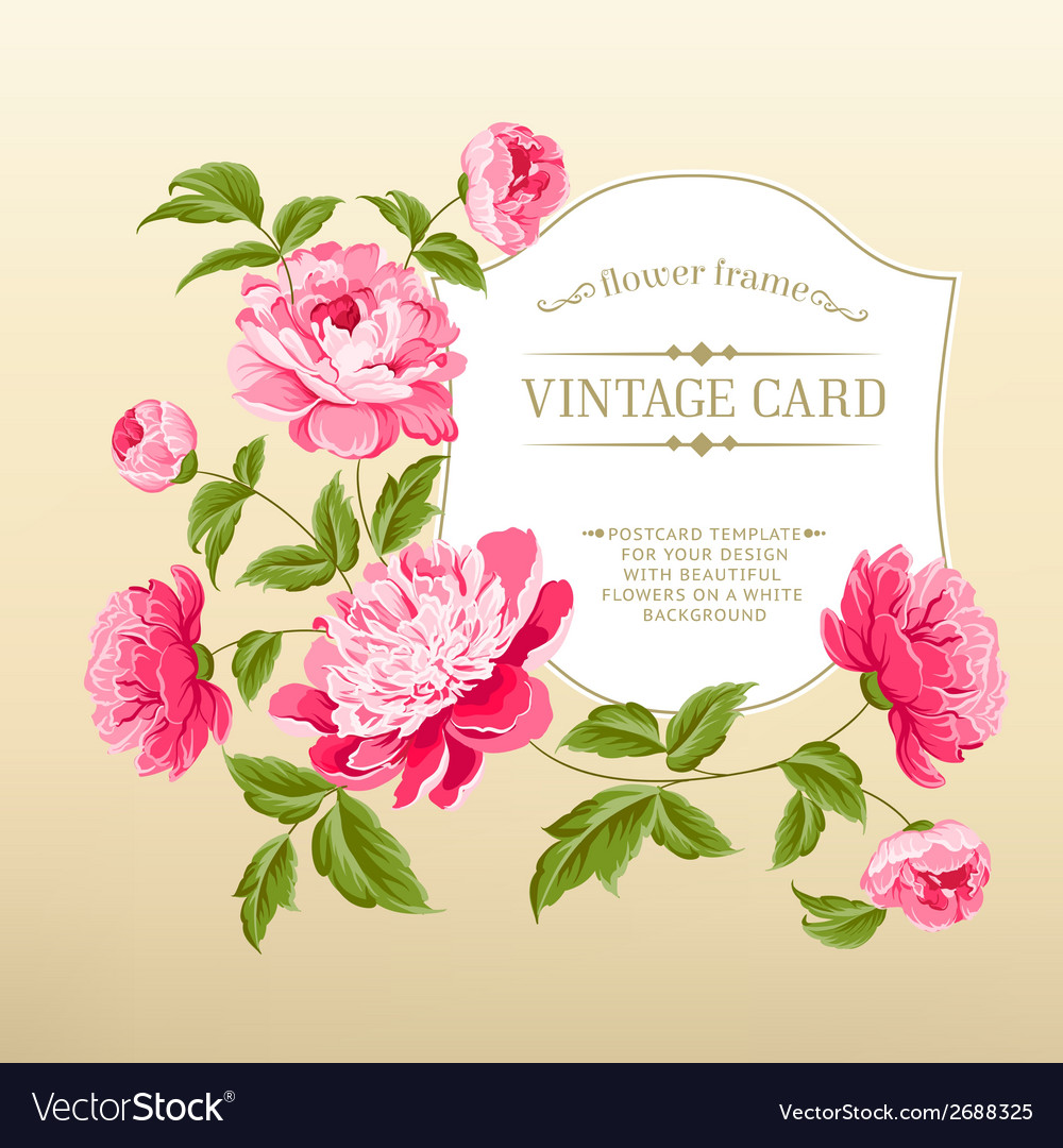 Frame with peonies vector