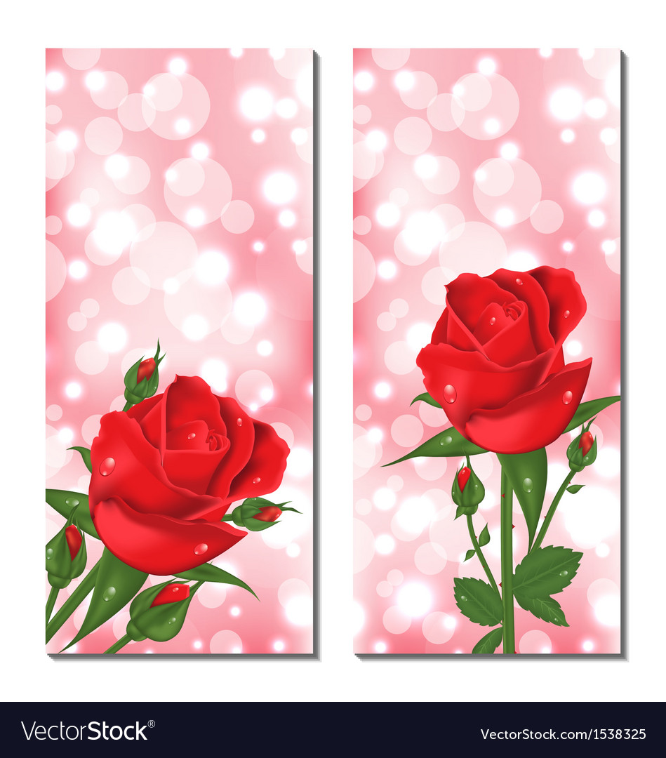 Set of beautiful cards with red roses vector | Price: 1 Credit (USD $1)