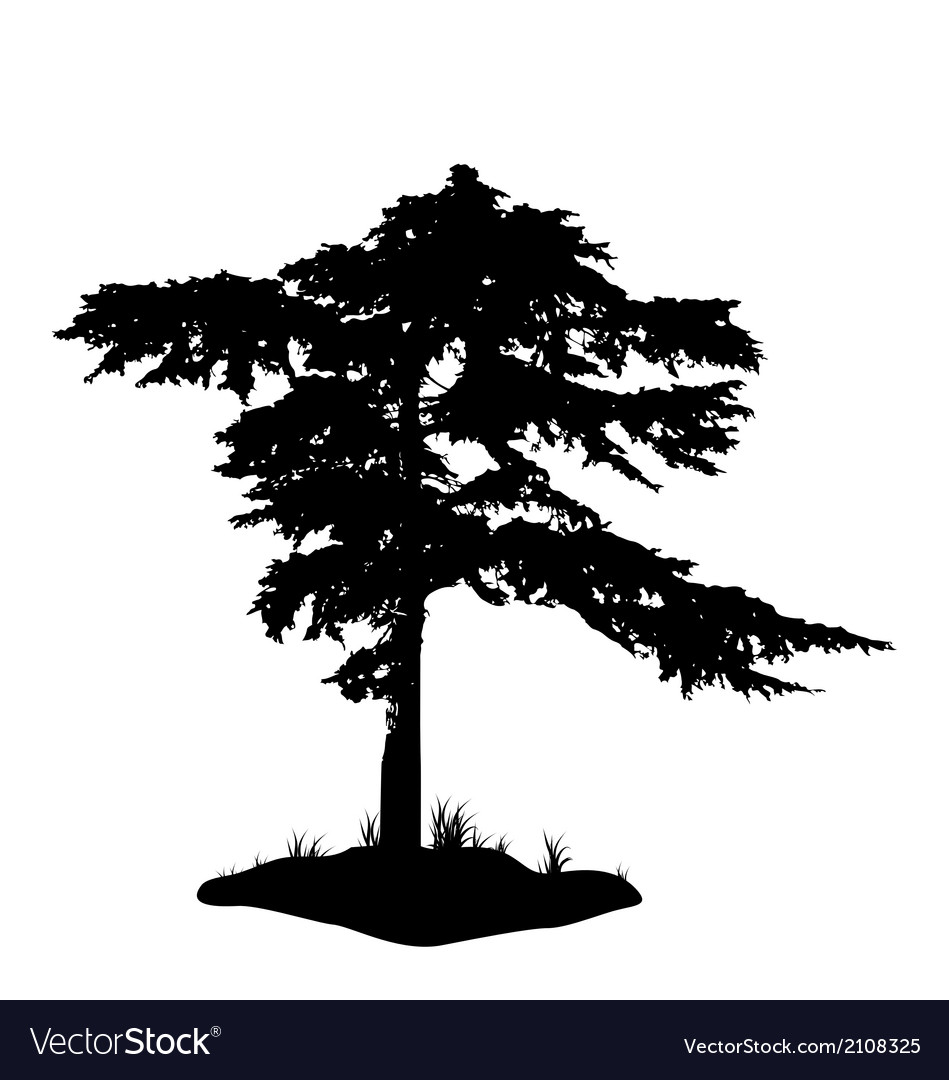 Tree silhouette isolated on white background vector | Price: 1 Credit (USD $1)