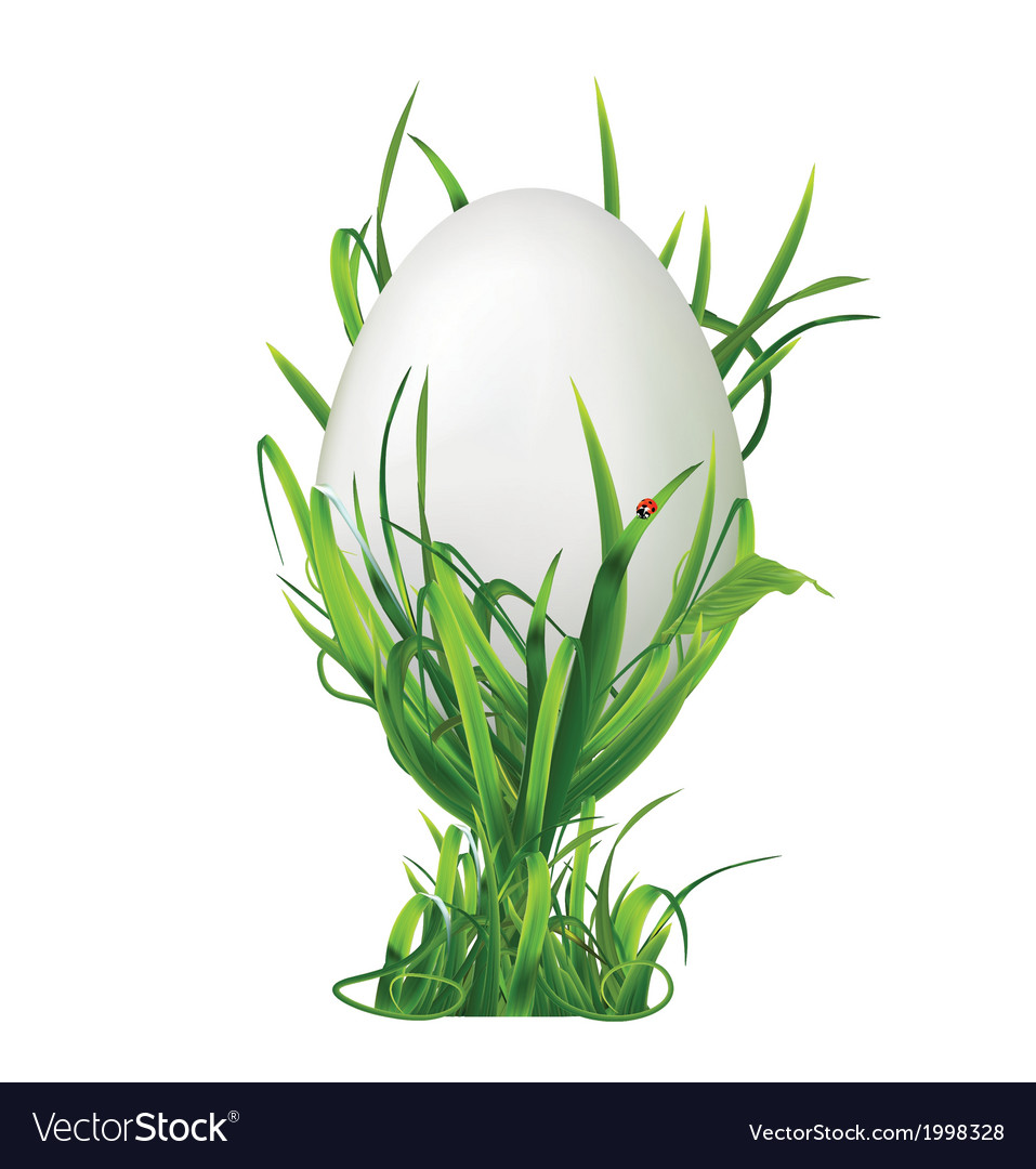 Easter egg and egg cup of grass vector   Price: 1 Credit (USD $1)