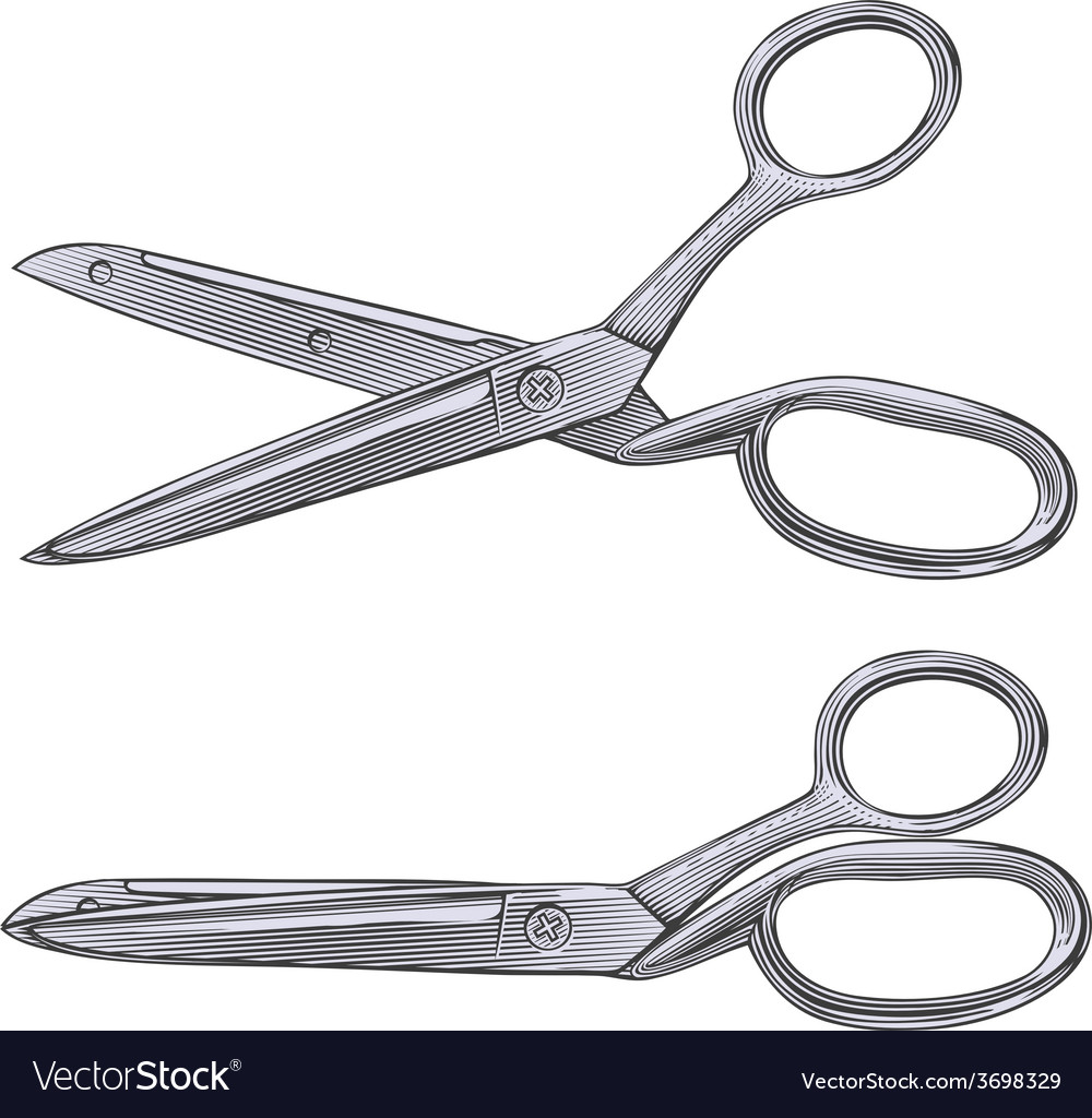 Tailor scissors in engraving style vector | Price: 1 Credit (USD $1)
