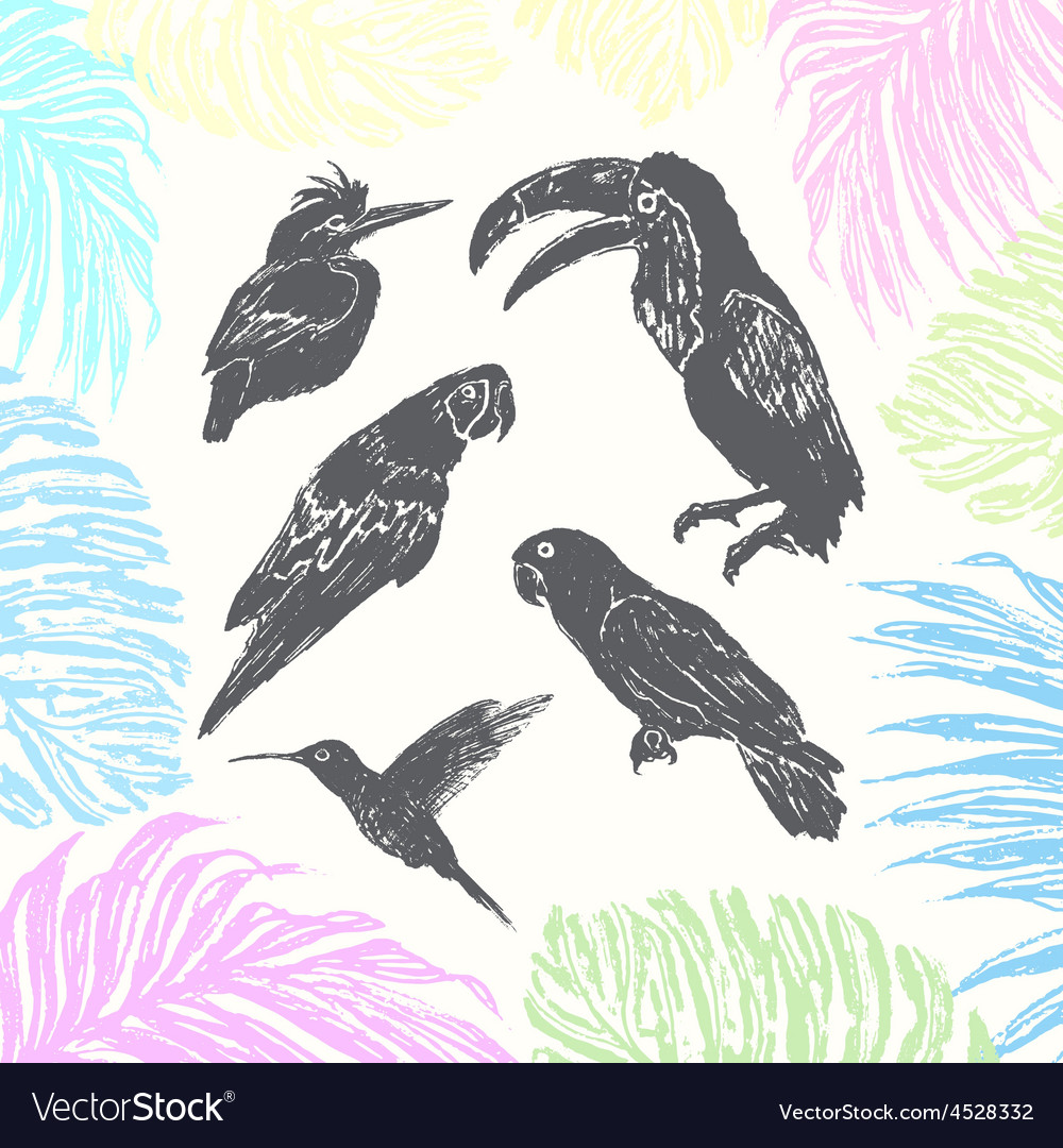 Ink hand drawn birds vector | Price: 1 Credit (USD $1)