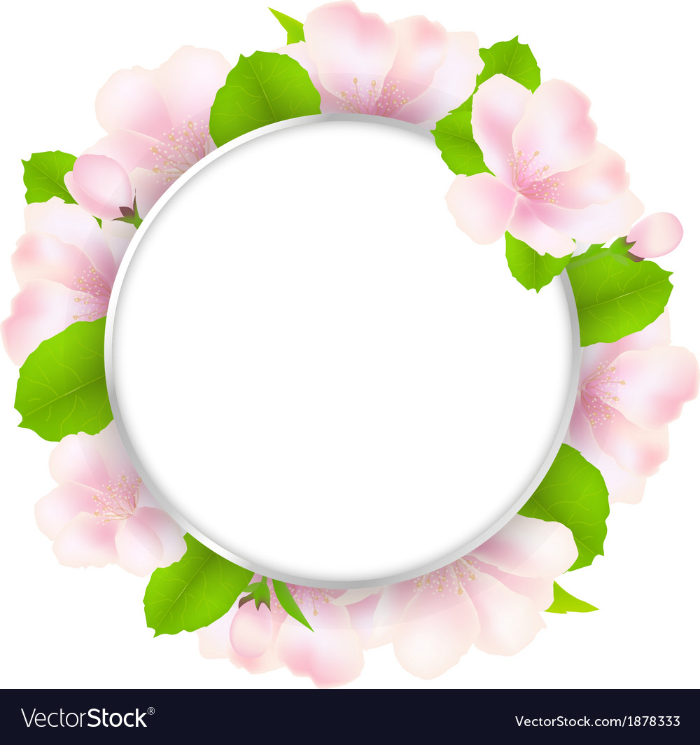 Apple tree flowers with speech bubble vector | Price: 1 Credit (USD $1)