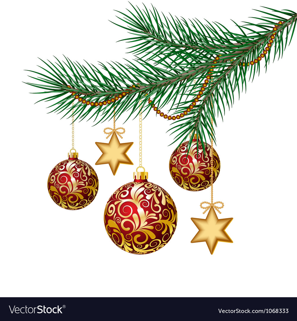 Red christmas balls on green spruce branch vector | Price: 1 Credit (USD $1)