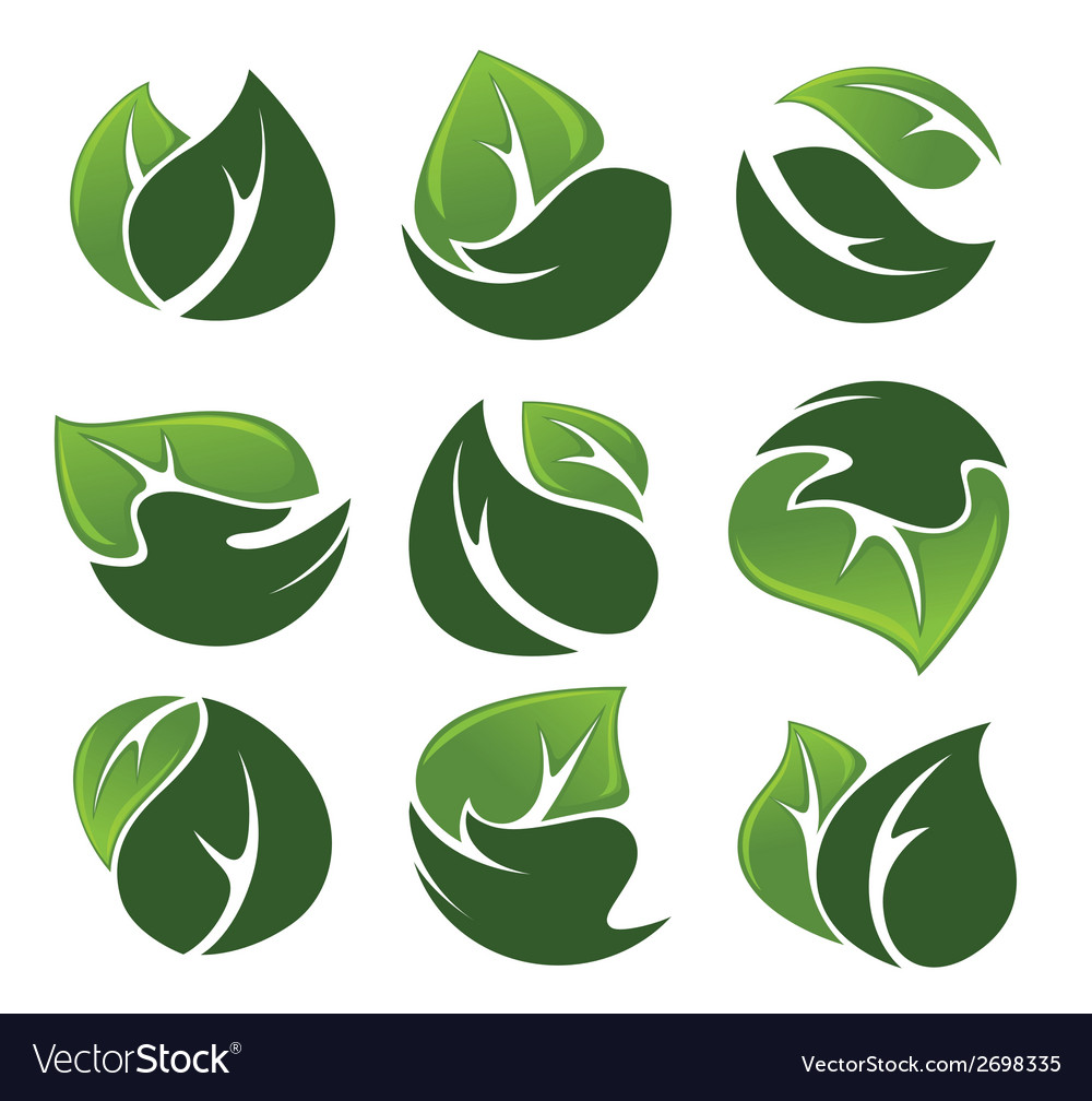 Hands and leaves vector | Price: 1 Credit (USD $1)