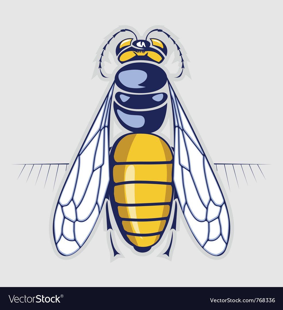 Bee honey sting insect with stripes vector | Price: 3 Credit (USD $3)