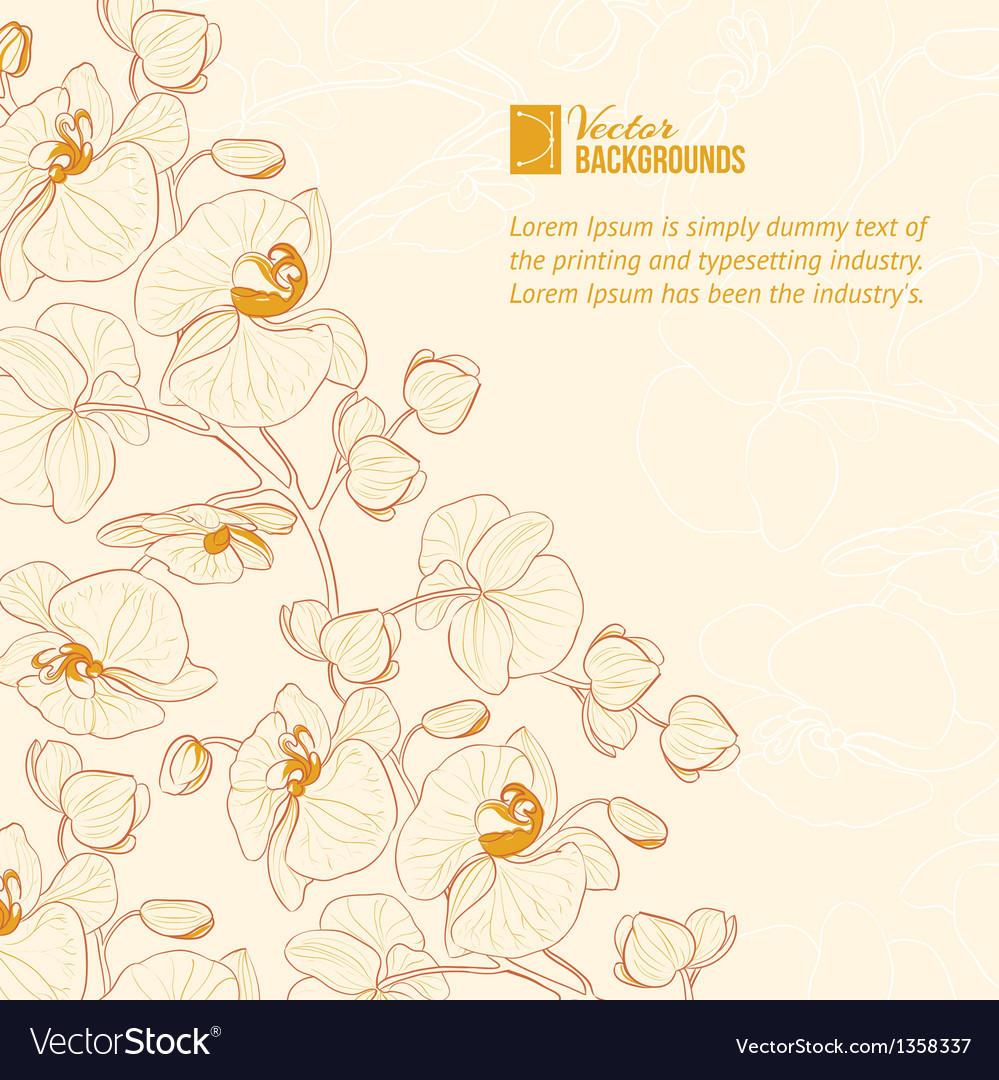 Orchid flower label vector | Price: 1 Credit (USD $1)