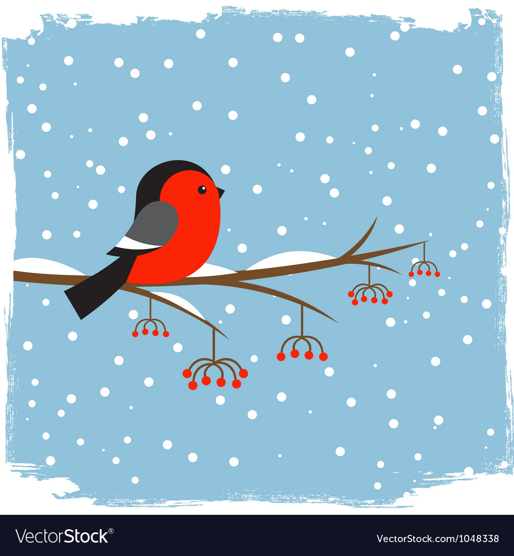 Cute bullfinch vector | Price: 1 Credit (USD $1)