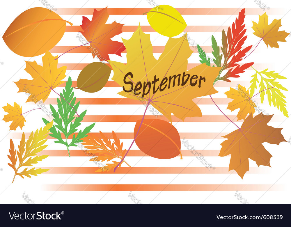 Autumn leaves - september month vector | Price: 1 Credit (USD $1)