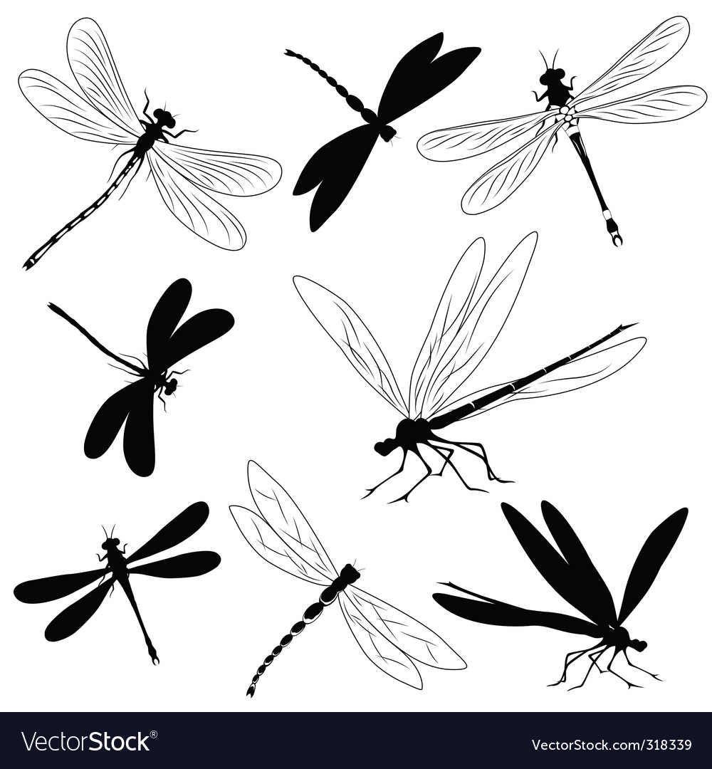 Dragonflies tattoo vector | Price: 1 Credit (USD $1)