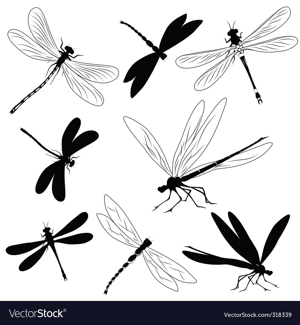 Dragonflies tattoo vector | Price: 1 Credit (USD $1)