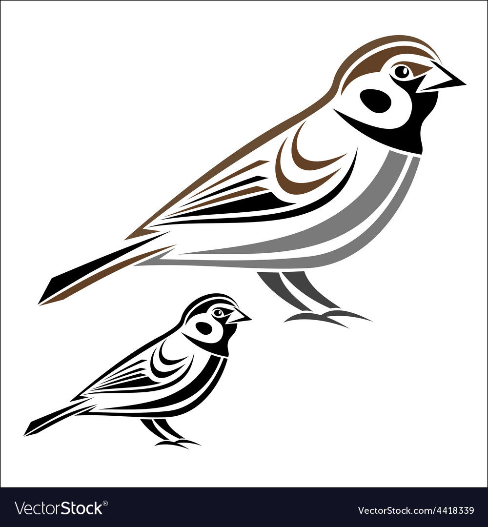 House sparrow vector | Price: 1 Credit (USD $1)