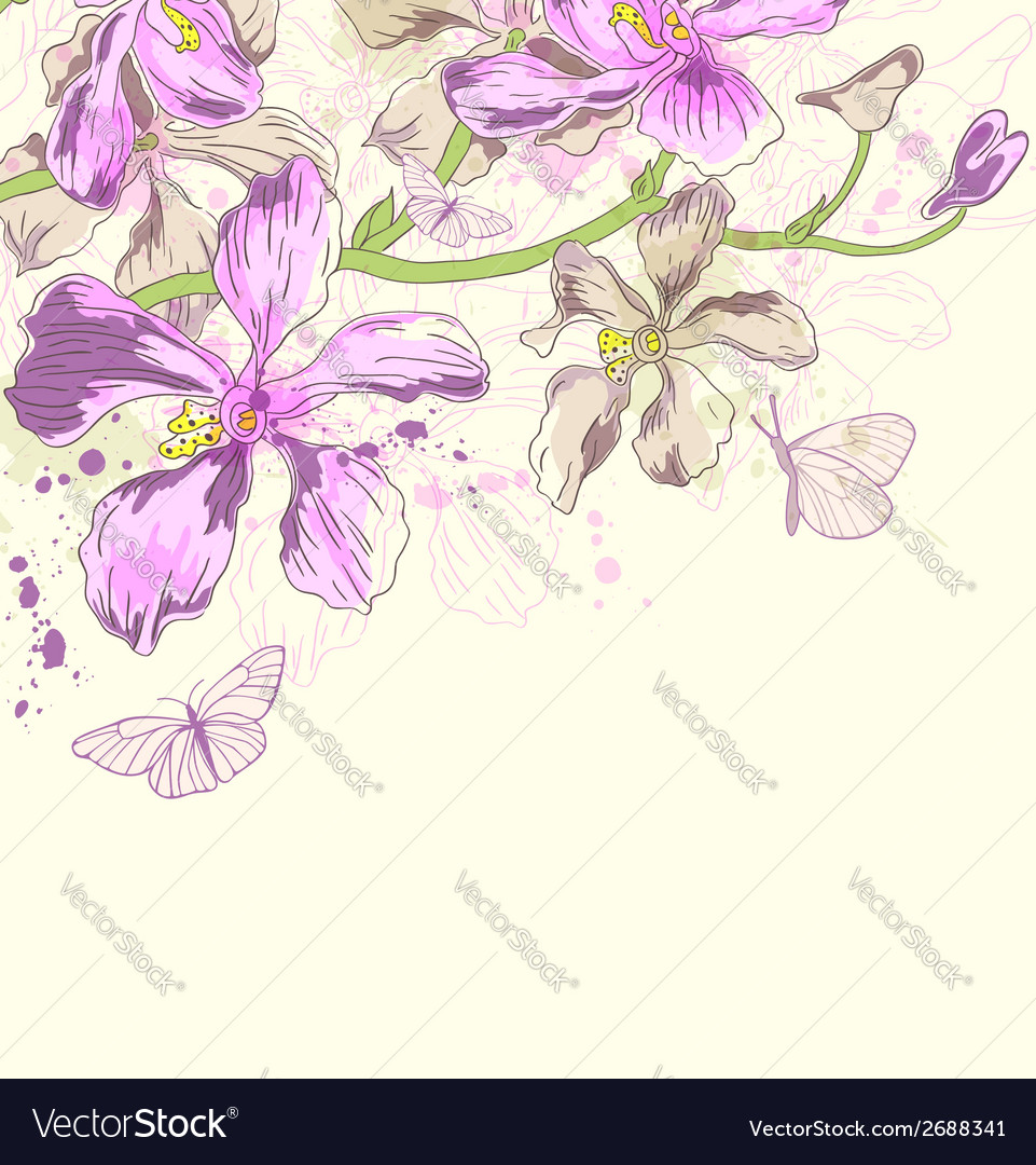 Decorative background with orchids vector | Price: 1 Credit (USD $1)