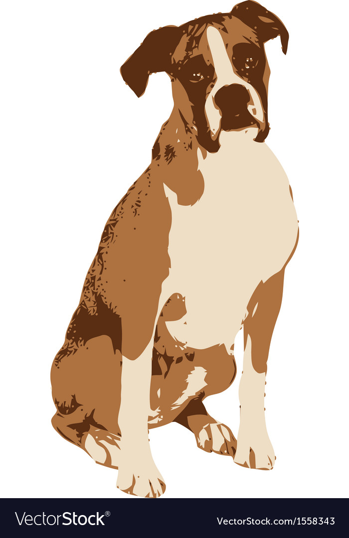 Boxer dog vector | Price: 1 Credit (USD $1)